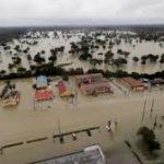 Hurricane Harvey Relief - DogsandCatsCastle Pet Supplies